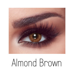 Bella Elite Contact Lenses -  Almond Brown - One Day