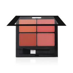 Ministar V-Shade Matte Eye Shadow Palette - N 101