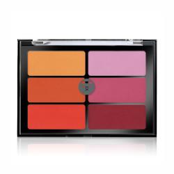 Viseart Orange Violet Blush Palette