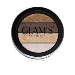 Glams Quatro Eyeshadow - N313