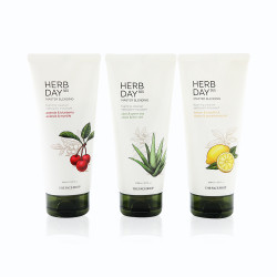 The Face Shop Herb Day 365 Master Blending Foaming Cleanser Set
