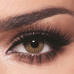 Bella - Contact Lenses - One Day Radiant Hazelnut - Daily