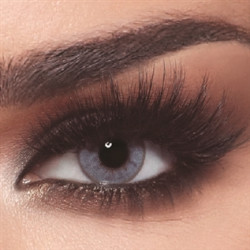 Bella - Contact Lenses - One Day Bluish Gray - Daily